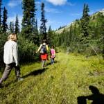 Hiking on Grey Mountain
